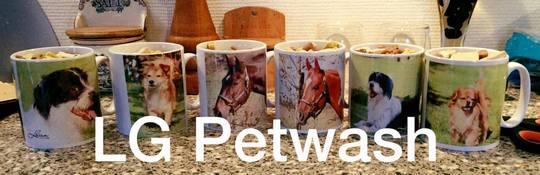 LG Petwash